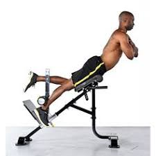 Roman Chair Sit Ups by Chaise Romaine Weider Pt800 Station De Push Ups спорт снаряди