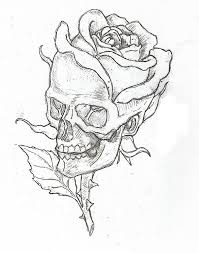 Skull And Rose Drawing Picture Flowers For Easy Drawings Roses And Skulls
