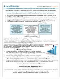 Business Development Executive Resume Samples Vp Sample Finance Full Like Marketing Management