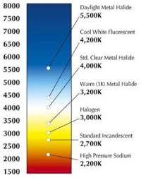 led bulb colour temperature learn led which led light