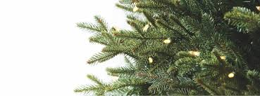 Fraser Fir Artificial Christmas Tree Sale by Artificial Christmas Trees Pre Lit Christmas Trees Frontgate