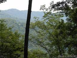 Christmas Tree Farms In Boone Nc by Build Your Own Mountain Retreat In The Nc High Country Farms And