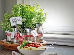 kräuter küche anpflanzen tipps für passende kombinationen