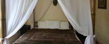 chambre d hote malo chambre d hote malo intra muros africaine2012 choosewell co