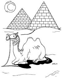 Camel In Egypt Coloring Page