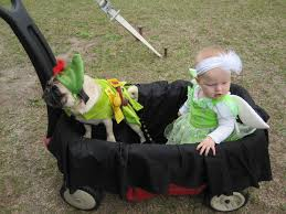Spirit Halloween Sarasota Bee Ridge by Every Needs A Little Black Pug