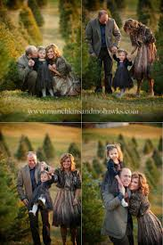 Christmas Tree Farm Packages In Boone Nc by 35 Best 2014 Holiday Mini Sessions Images On Pinterest Christmas