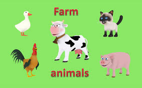 Farm Animals For Children Toddlers. 3D Animated Picture Show ... Peekaboo Animal For Fire Tv App Ranking And Store Data Annie Kids Farm Sounds Android Apps On Google Play Cuddle Barn Animated Plush Friend With Music Ebay Public School Slps Cheap Ipad Causeeffect The Animals On Super Simple Songs Youtube A Day At Peg Wooden Shapes Puzzle Toy Baby Amazoncom Melissa Doug Sound 284 Best Theme Acvities Images Pinterest Clipart Black And White Gallery Face Pating Fisher Price Little People Lot Tractor