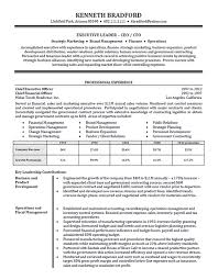 High Level Executive Resume Example