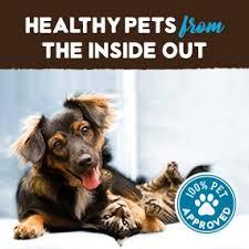 Pumpkin For Pets Diarrhea by Amazon Com Raw Paws Pet Natural Pumpkin Powder Digestive