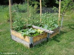 Raised Beds Made From Pallet Collars