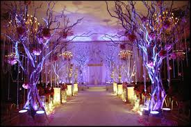 Fern 39n39 Decor Indian Wedding Decorator Nj New Jersey Mandap Stage Themes Decorations