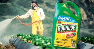 How To Protect Yourself Against Monsantos Cancer Causing Roundup