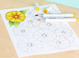 Stylish Inspiration Ideas Best Markers For Coloring Books Beautiful Gallery