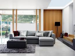 Red Sofa Living Room Ideas by Home Design Dark Red Sofa Wall Cool Gray Living Room Color
