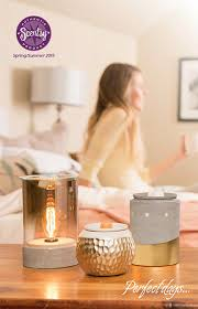 Pumpkin Scentsy Warmer 2015 by October 2017 Scentsy Warmer Of The Month Pumpkin Delivery Scentsy