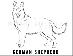 Good Shepherd Coloring Pages Free Mini Australian Page Bible Dog Child Art Adult Full Size