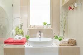 tillandsie die luftpflanze ohne wurzel als badezimmerdeko