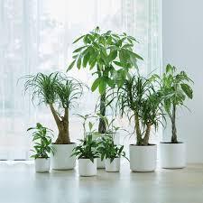 Fabulous Tricks Artificial Plants Balcony Patio Artificial Plants