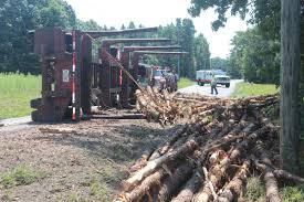 Charlotte County Man Suffers Minor Injuries In Logging Truck Wreck ... Michigan Upper Peninsula Logging Truck Stock Photos Photo By Jeremy Rempel Highways Today Bob Cat Removing Logs From Overturned On Highway Farwell Canyon Near Williams Lake British Columbia Eatonville To Rainier Thrwheel Ford Nt950 Old Peterbilt Logging Truck With 10 Wide Bunks Pinterest This Electric Driverless Can Carry Up 16 Tons Of Fileb Double In Australiajpg Wikimedia Commons Allectric And Autonomous Unveiled Electrek Loses Load Mayook The Drive Fm Loading A On Location Youtube