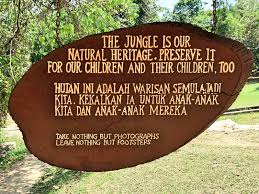 taman negara the ancient rainforest in the of