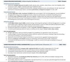 Resume Employment History Example