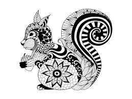 Free Coloring Page Adult Zentangle Squirrel By Bimdeedee Cute