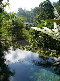 100 Ubud Hanging Garden Bali Beautiful S In Indonesia I Like To Waste