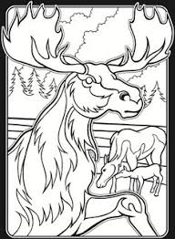 In The Wild Stained Glass Coloring Dover Publications Samples