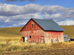 Old Red Barn Old Red Barn Kamas Utah Rh Barns Pinterest Doors Rick Holliday Learn To Paint An Old Red Barn Acrylic Tim Gagnon Studio Panoramio Photo Of In Grindrod Bc Fading Watercolor Yvonne Pecor Mucci Rural Landscapes In Winter Stock Picture I2913237 Farm With Hay Bales Image 21997164 Vermont With The Words Dawn Till Dusk Painted Modern House Design Home Ideas Plans Loft Donate Northern Plains Sustainable Ag Society Iowa Artist Paul Roster Artwork Adventures