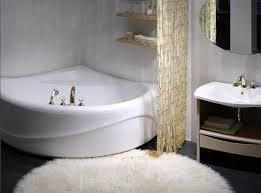 Simple Bathroom Designs With Tub by 96 Best Simple Bathroom Designs Images On Pinterest Bathroom