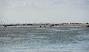chambre d hote baie de somme bord de mer entre baie de somme et baie d authie à quend plage entre mer et