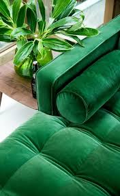 so sieht ein perfektes grünes samtsofa für ihr wohnzimmer aus