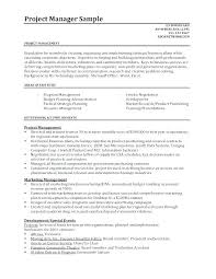 Sales Manager Resume Objective Statement Director It Sample Project Doc