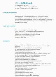 Budget Accountant CV Sample