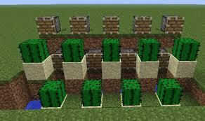 Minecraft Pumpkin Seeds Wont Plant by Farming Cactus In Minecraft Minecraft Guides