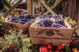 Knotts Berry Farm Halloween 2016 by Preview Get A Taste Of Boysenberry Festival 2017 At Knott U0027s Berry