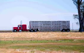 Senate Passes Bill Exempting Livestock Haulers From ELD
