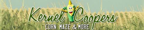 Toms Maze Pumpkin Farm by More Than 30 Corn Mazes In Ohio To Get Lost In This Fall