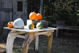 Pumpkin Festival Lewiston Maine by Chebeague Island News