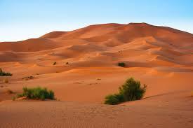 Sand Dunes In The Erg Chebbi Desert Western Sahara