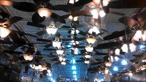Ceiling Fan Blades Menards by Decorating Mesmerizing Design Of Ceiling Fans Menards For