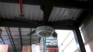 Panasonic Ceiling Fan 56 Inch by Robbins U0026 Myers Antique 5 Blade Ceiling Fan With Preheat