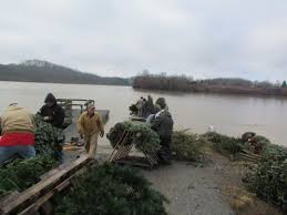 Colorado Springs Christmas Tree Permit 2014 by Kentucky Department Of Fish U0026 Wildlife Christmas Tree Recycling 2016