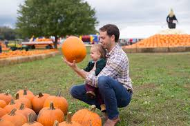 Rombachs Pumpkin Patch Hours by Blog Archives The Bona Fide Blonde