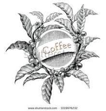 Coffee Frame Hand Drawing Vintage Engraving Illustration Logo Style