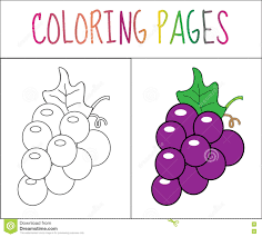 Royalty Free Vector Download Coloring Book Page