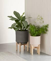 2 x palm großer pflanzkübel mit ständer salbeigrün und rosa
