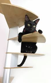 cat stairs cat stairs spiral staircase by catswall