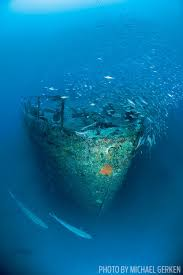 Uss America Sinking Photos by Best Wreck Diving In The United States Scuba Diving